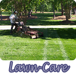 Professional Landscaping Amp Maintenance Mooresville Nc